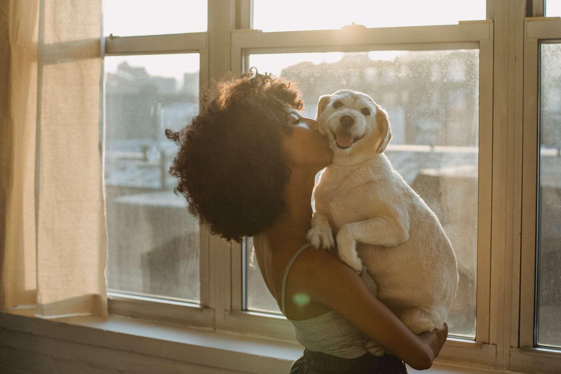black woman kissing cute purebred dog